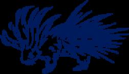 Porcs-épics Tricoteur